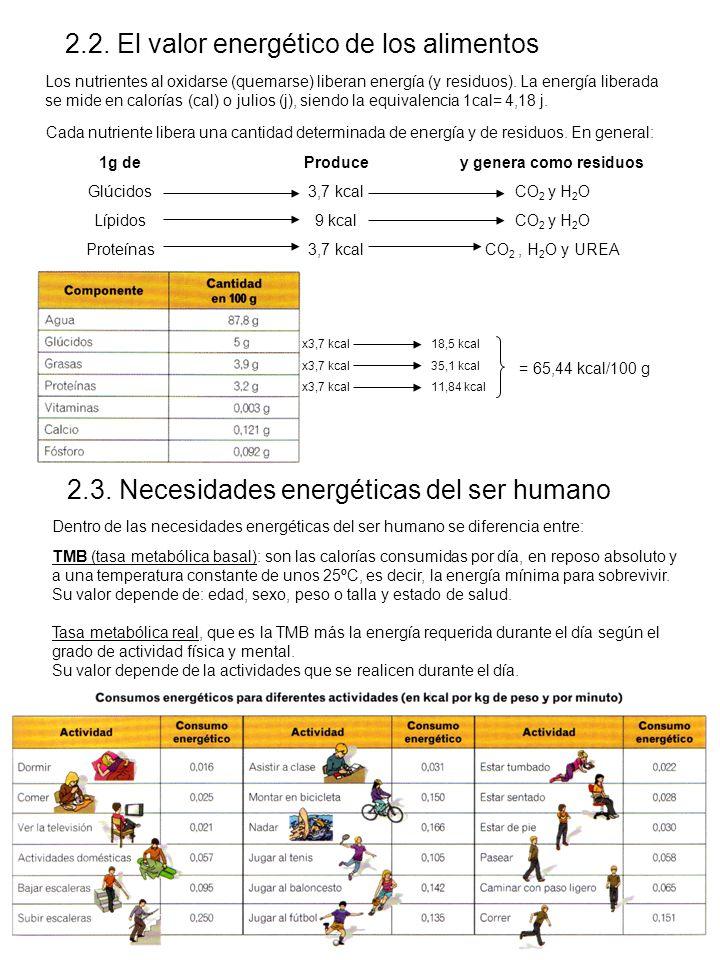 2.2. El valor energético de los alimentos