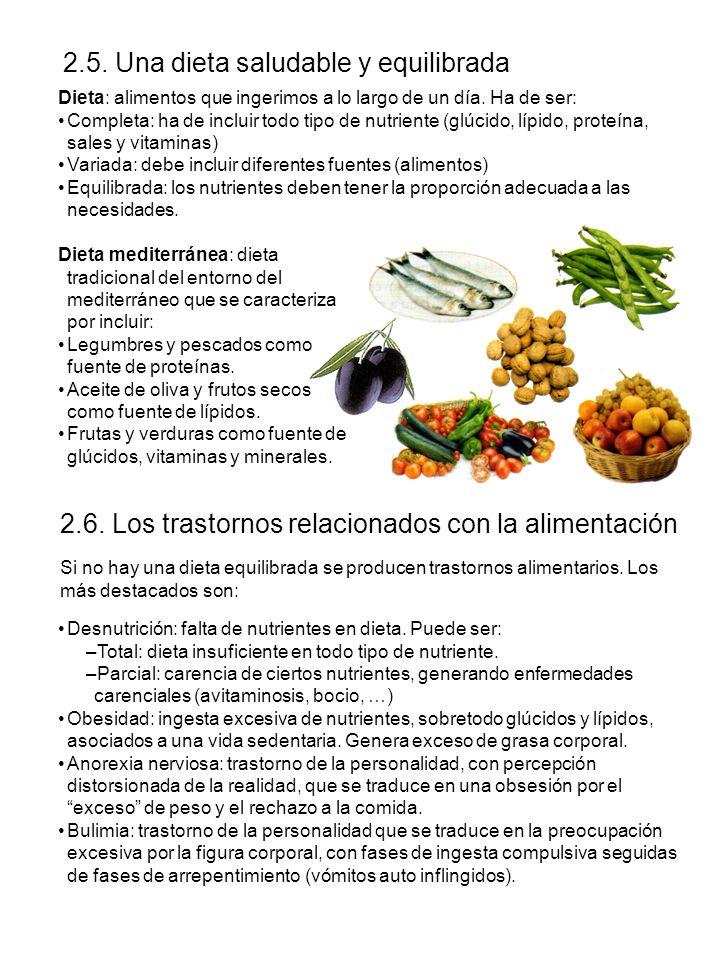 2.5. Una dieta saludable y equilibrada