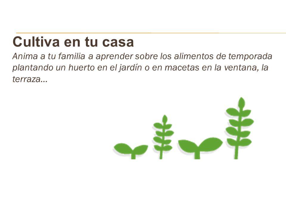 Cultiva en tu casa
