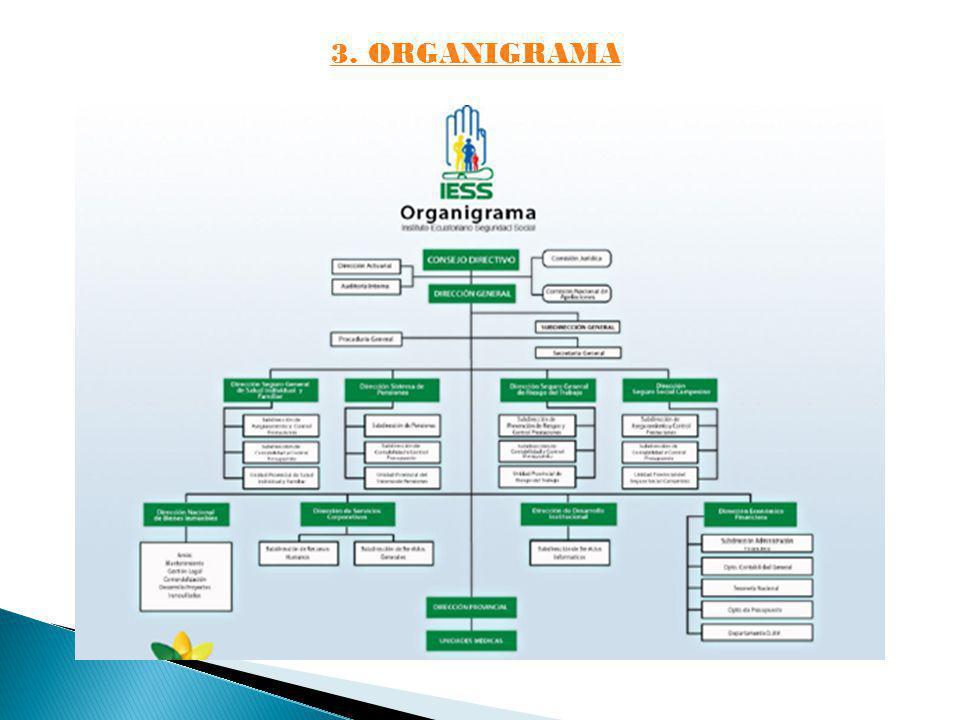 3. ORGANIGRAMA