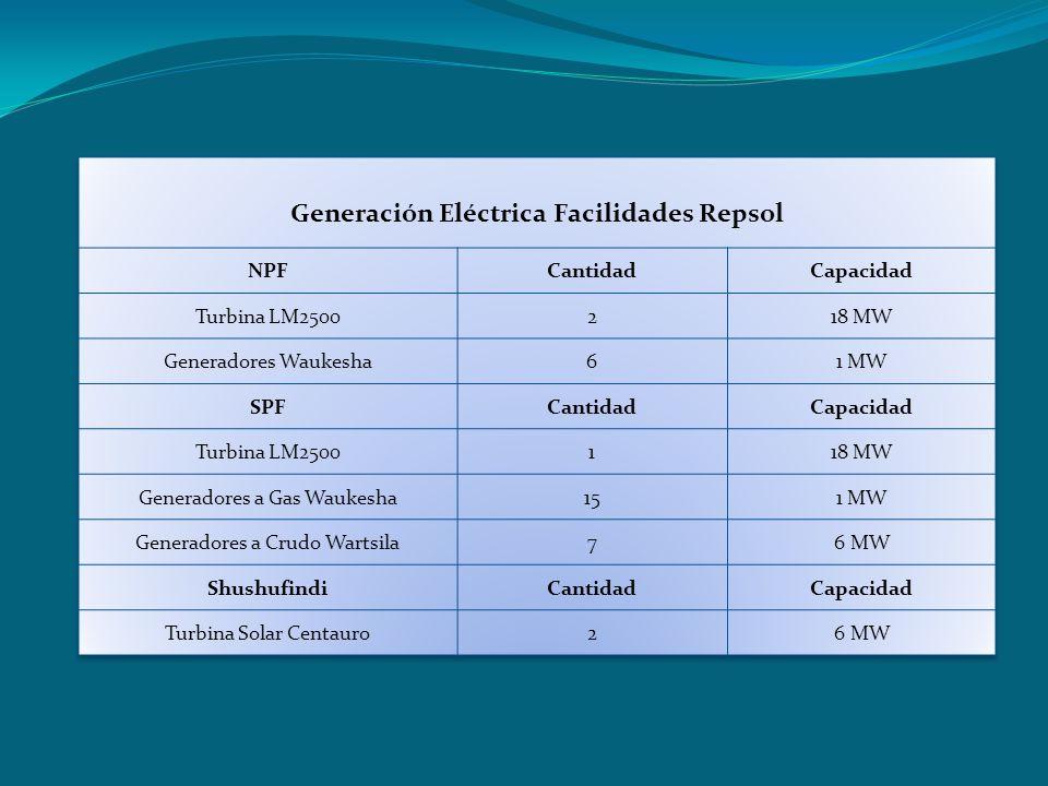Generación Eléctrica Facilidades Repsol
