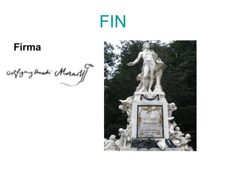 FIN Firma