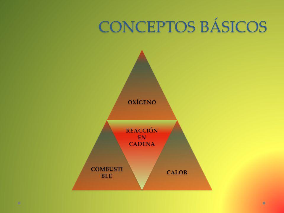 CONCEPTOS BÁSICOS OXÍGENO COMBUSTIBLE REACCIÓN EN CADENA CALOR