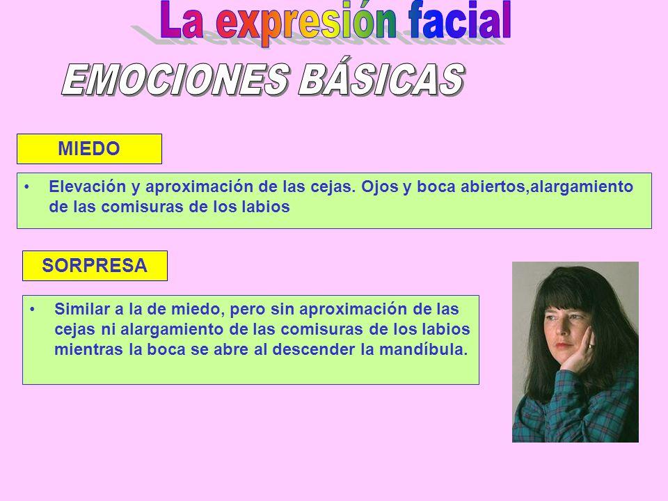 La expresión facial EMOCIONES BÁSICAS MIEDO SORPRESA