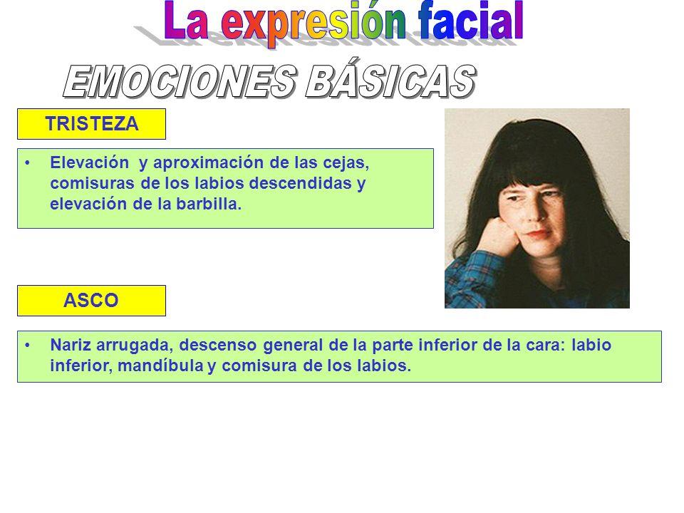 La expresión facial EMOCIONES BÁSICAS TRISTEZA ASCO