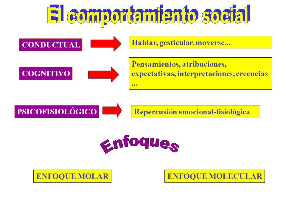 El comportamiento social