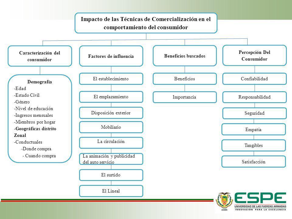 Caracterización del consumidor Factores de influencia