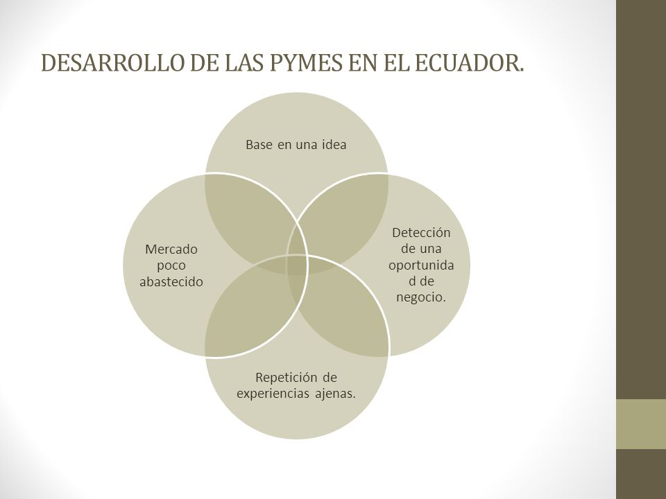 DESARROLLO DE LAS PYMES EN EL ECUADOR.