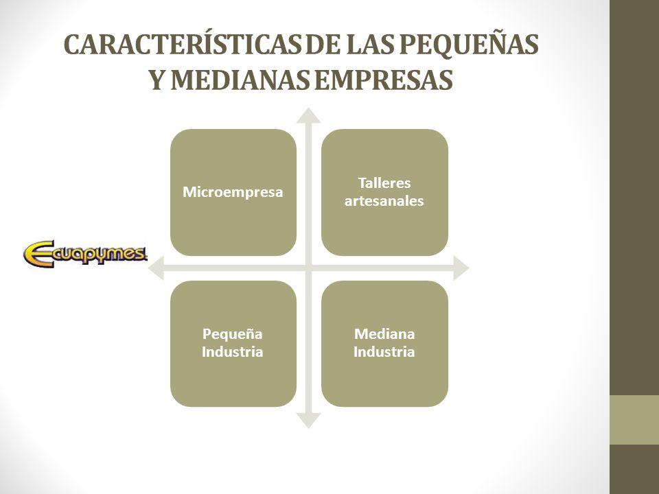CARACTERÍSTICAS DE LAS PEQUEÑAS Y MEDIANAS EMPRESAS
