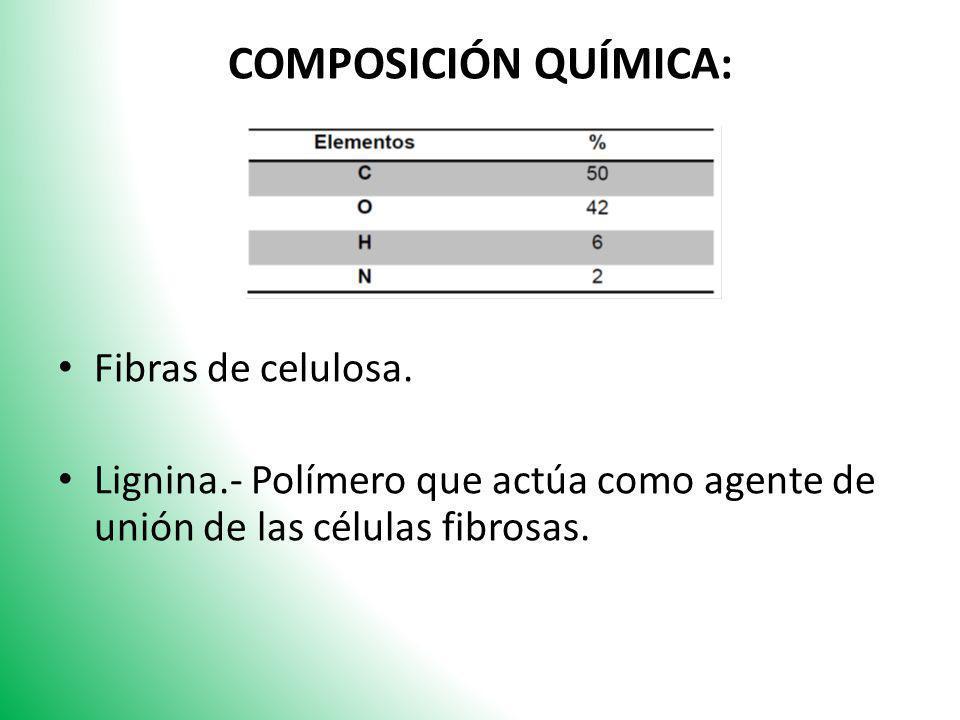 COMPOSICIÓN QUÍMICA: Fibras de celulosa.