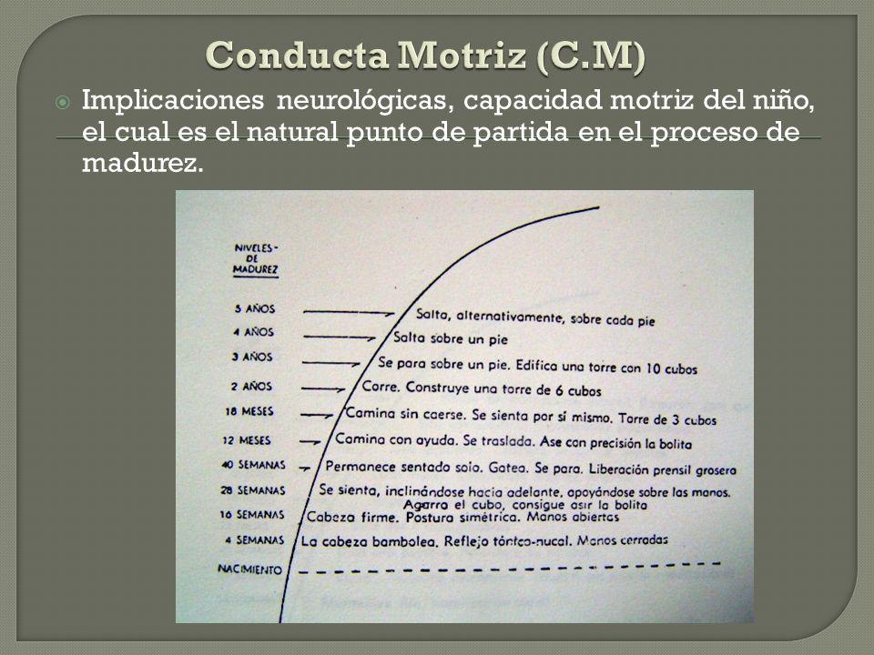 Conducta Motriz (C.M)Implicaciones neurológicas, capacidad motriz del niño, el cual es el natural punto de partida en el proceso de madurez.