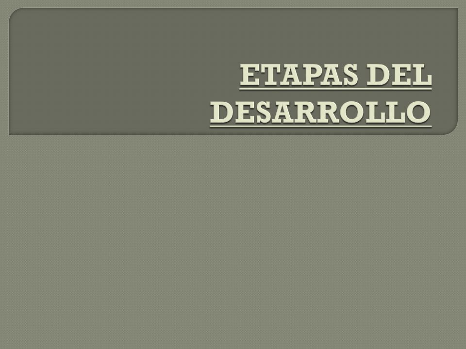 ETAPAS DEL DESARROLLO