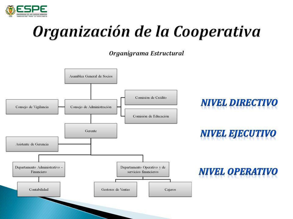 Organización de la Cooperativa