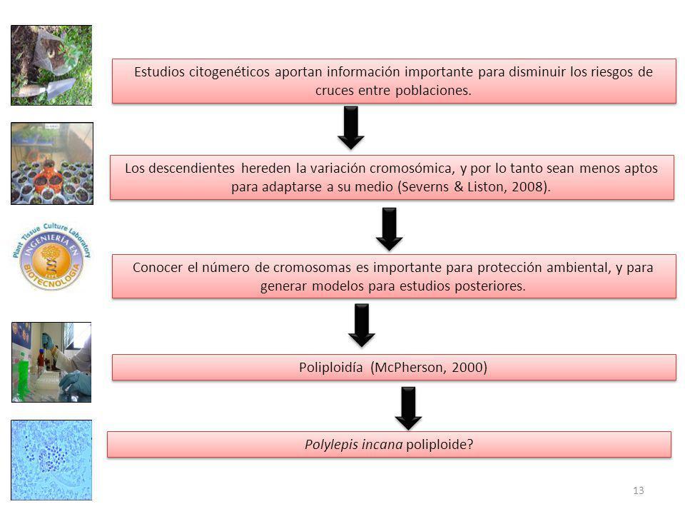 Poliploidía (McPherson, 2000)