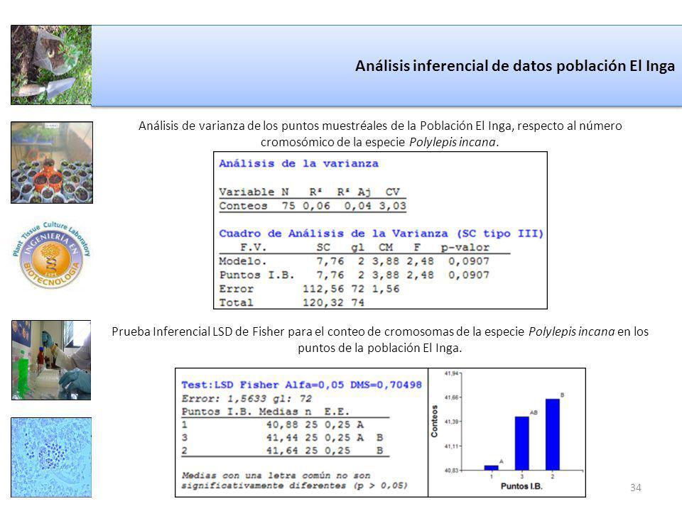 Análisis inferencial de datos población El Inga