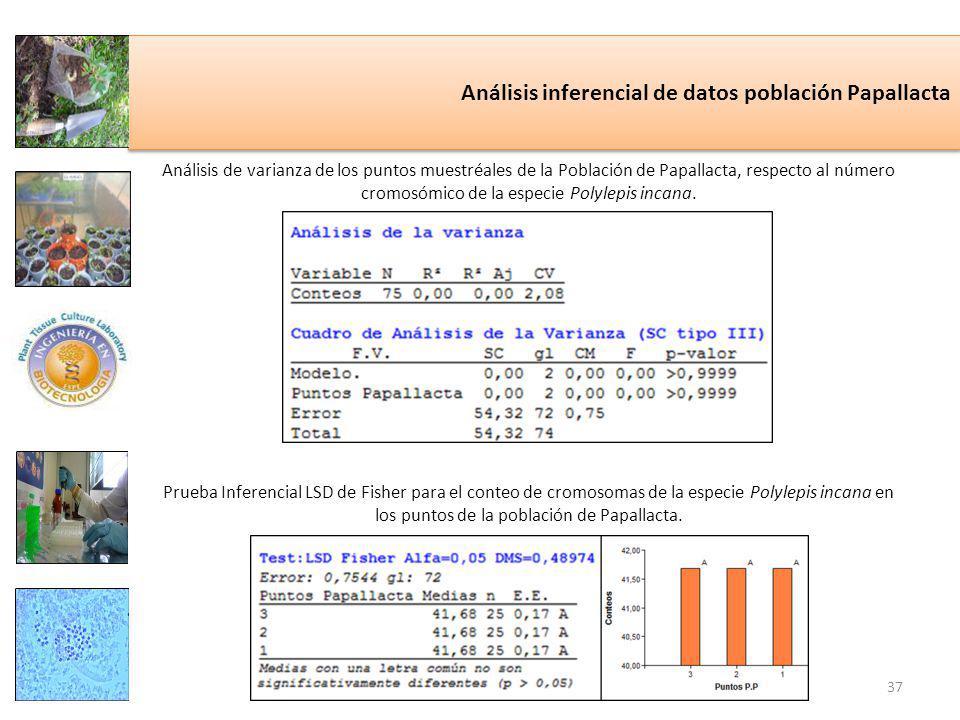 Análisis inferencial de datos población Papallacta