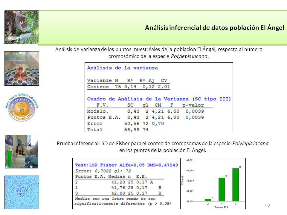 Análisis inferencial de datos población El Ángel