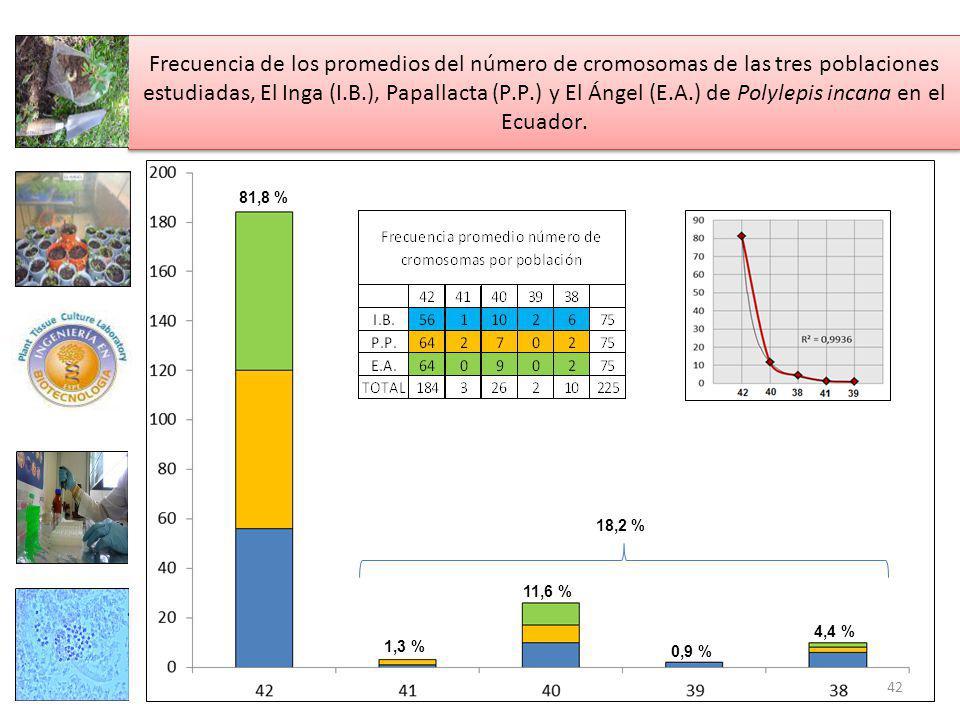 Frecuencia de los promedios del número de cromosomas de las tres poblaciones estudiadas, El Inga (I.B.), Papallacta (P.P.) y El Ángel (E.A.) de Polylepis incana en el Ecuador.