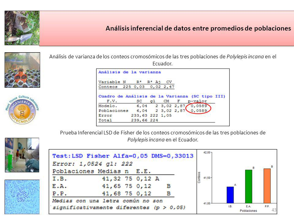 Análisis inferencial de datos entre promedios de poblaciones