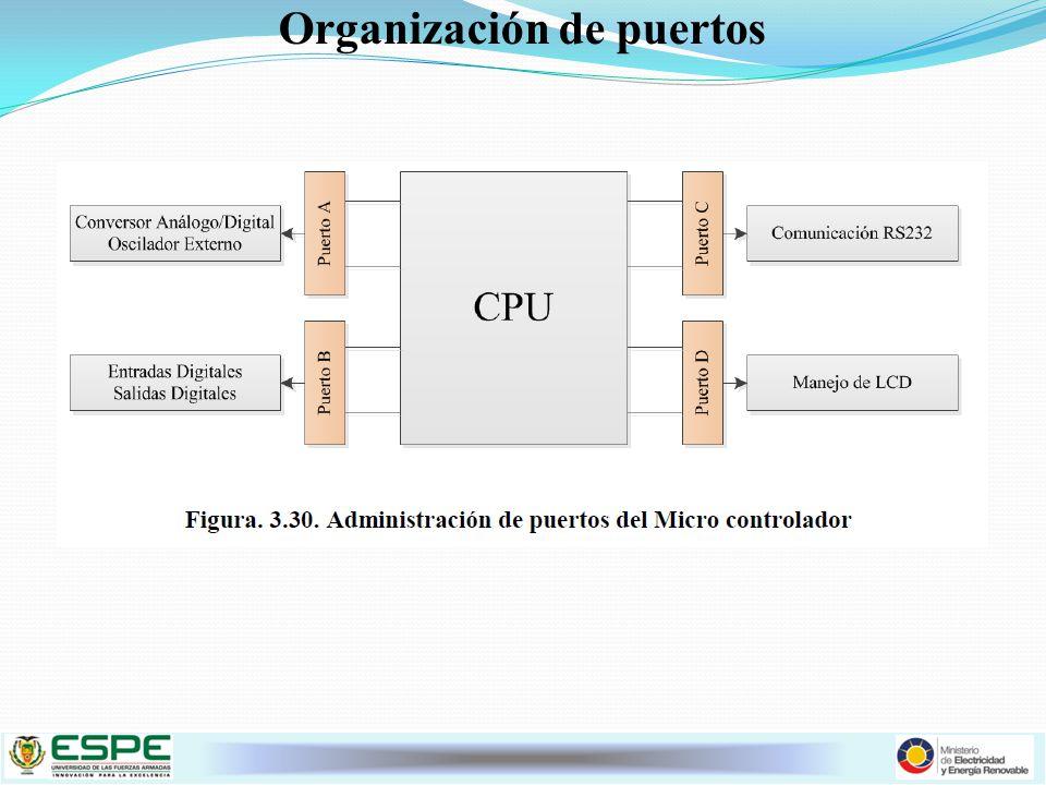 Organización de puertos