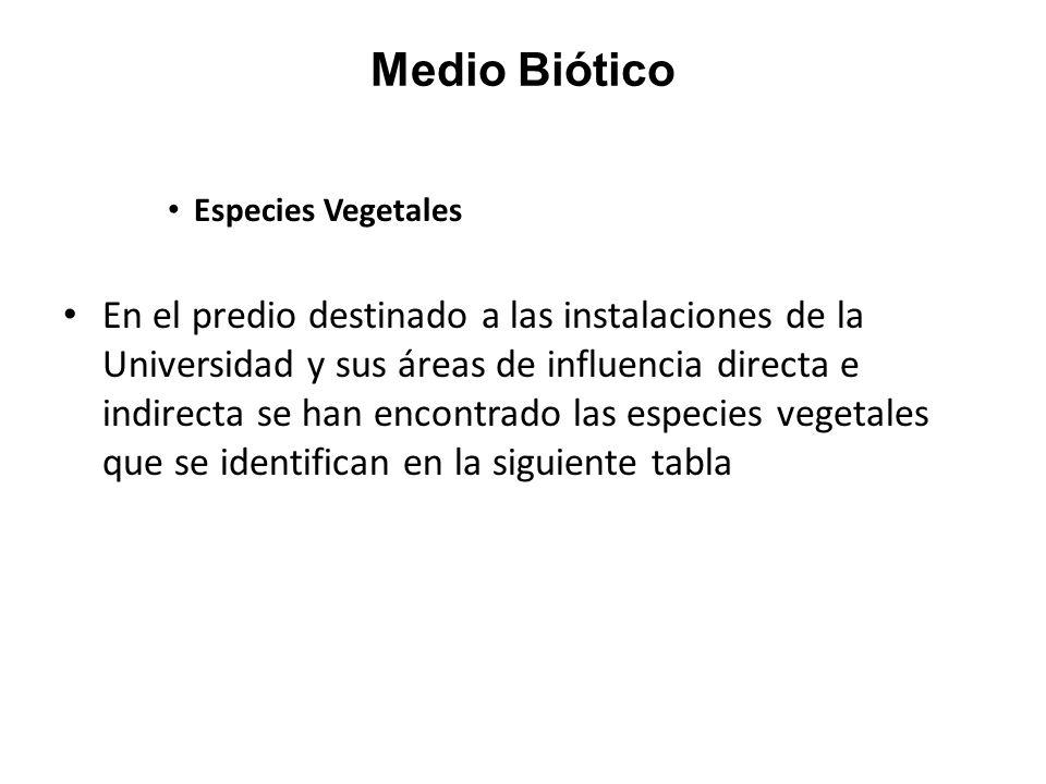 Medio Biótico Especies Vegetales.