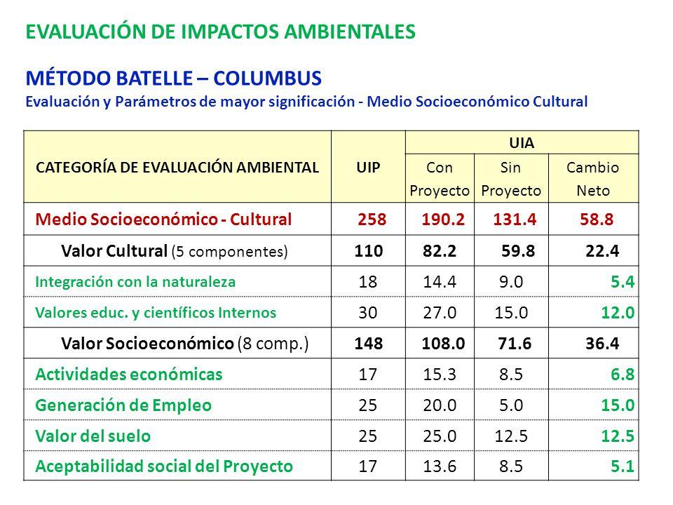 CATEGORÍA DE EVALUACIÓN AMBIENTAL