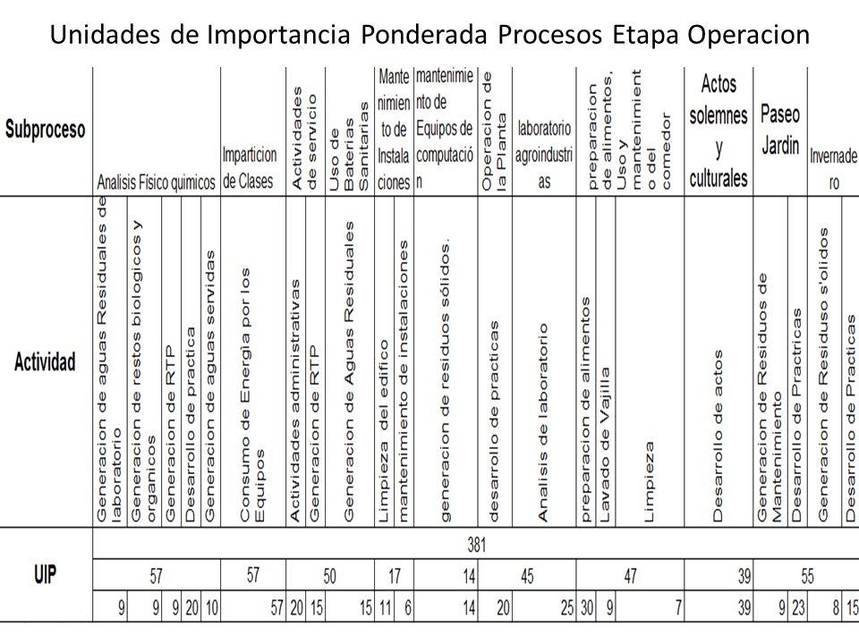 Unidades de Importancia Ponderada Procesos Etapa Operacion