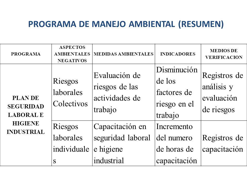 PROGRAMA DE MANEJO AMBIENTAL (RESUMEN)