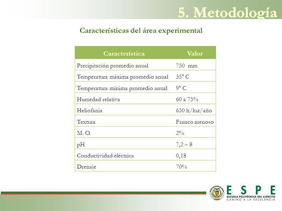 Características del área experimental