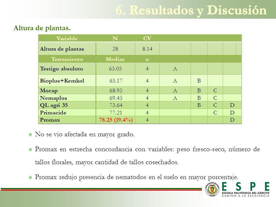 6. Resultados y Discusión