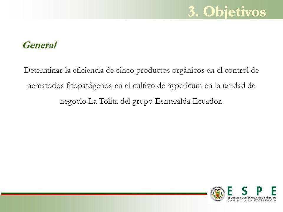 3. Objetivos General.