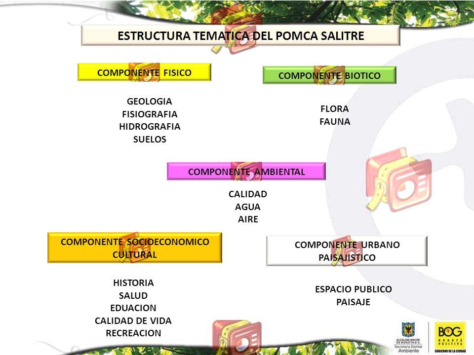 ESTRUCTURA TEMATICA DEL POMCA SALITRE