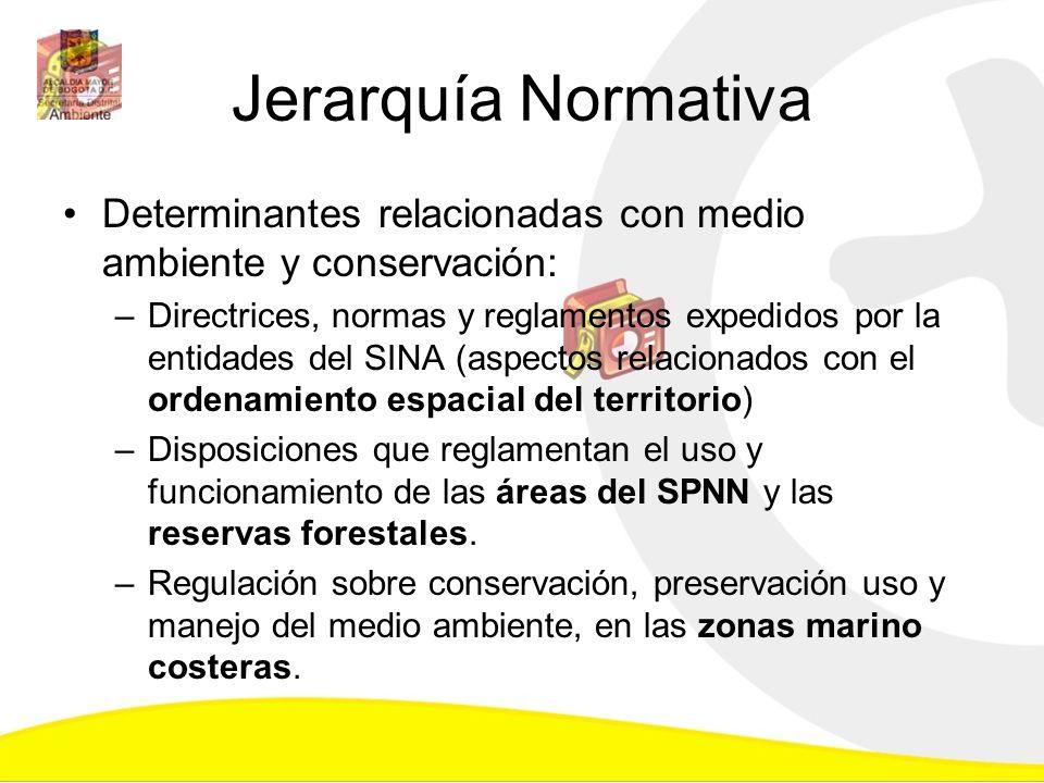 Jerarquía Normativa Determinantes relacionadas con medio ambiente y conservación: