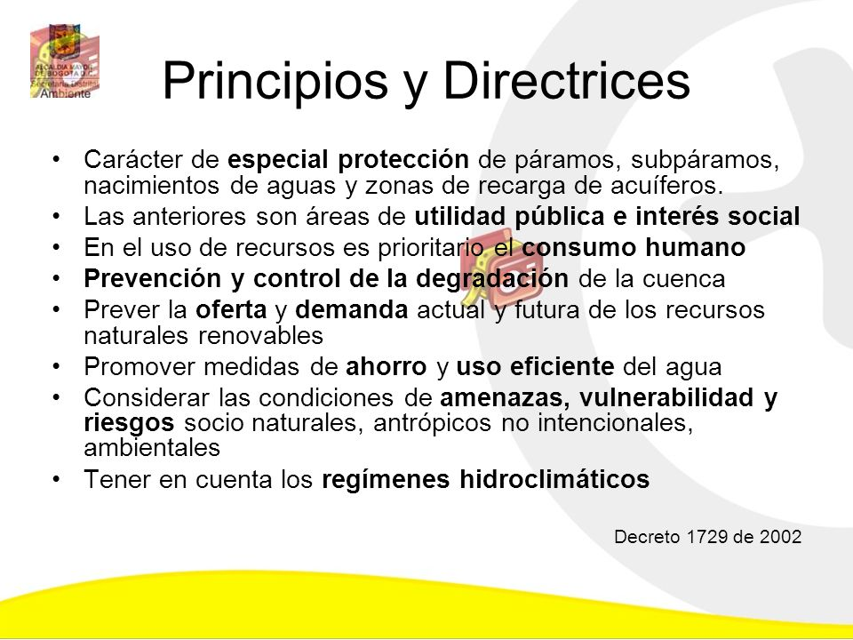 Principios y Directrices