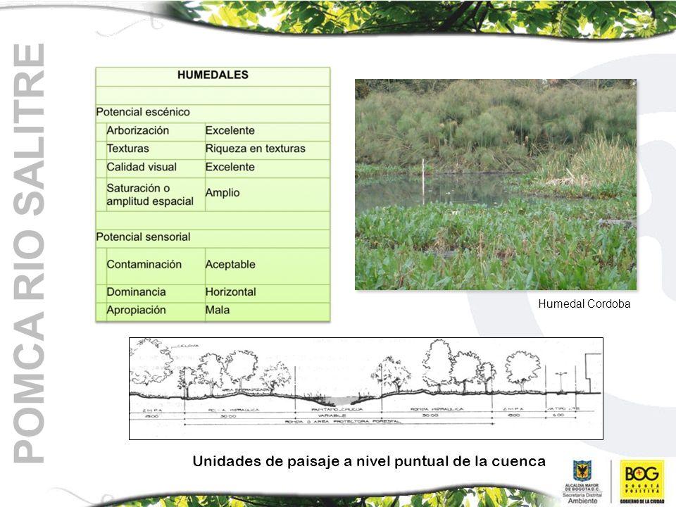 Unidades de paisaje a nivel puntual de la cuenca