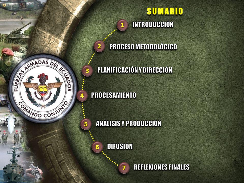 SUMARIO 1 INTRODUCCIÓN 2 PROCESO METODOLÓGICO 3