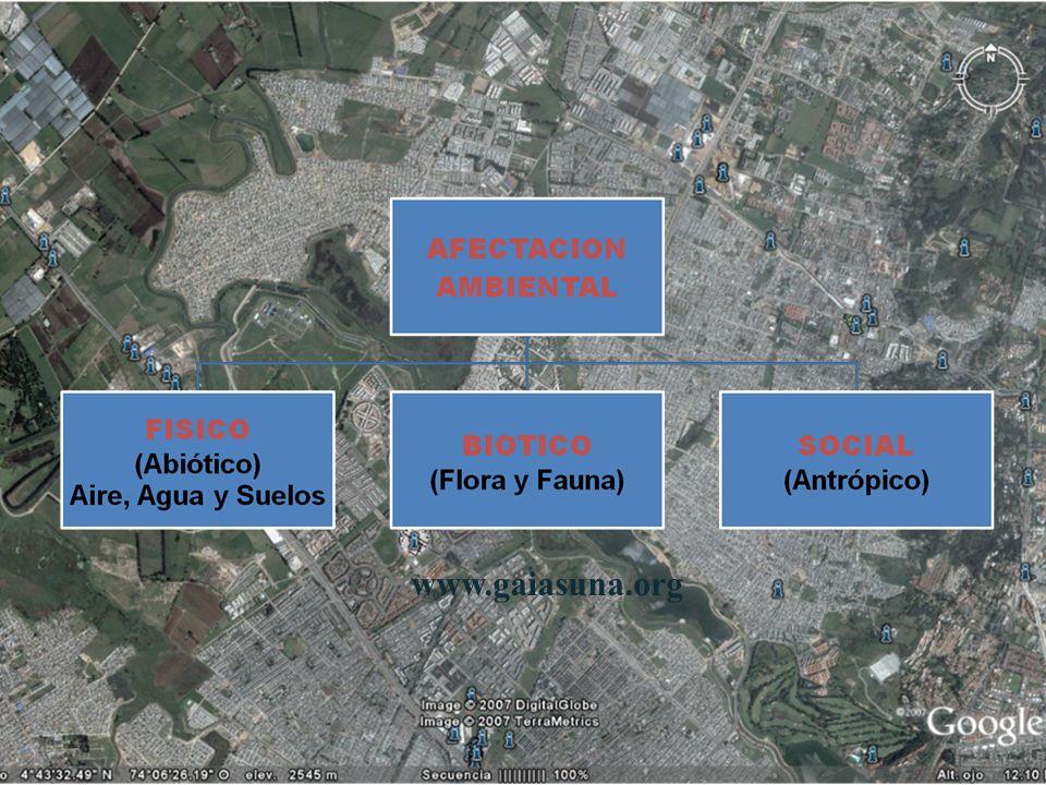 www.gaiasuna.org