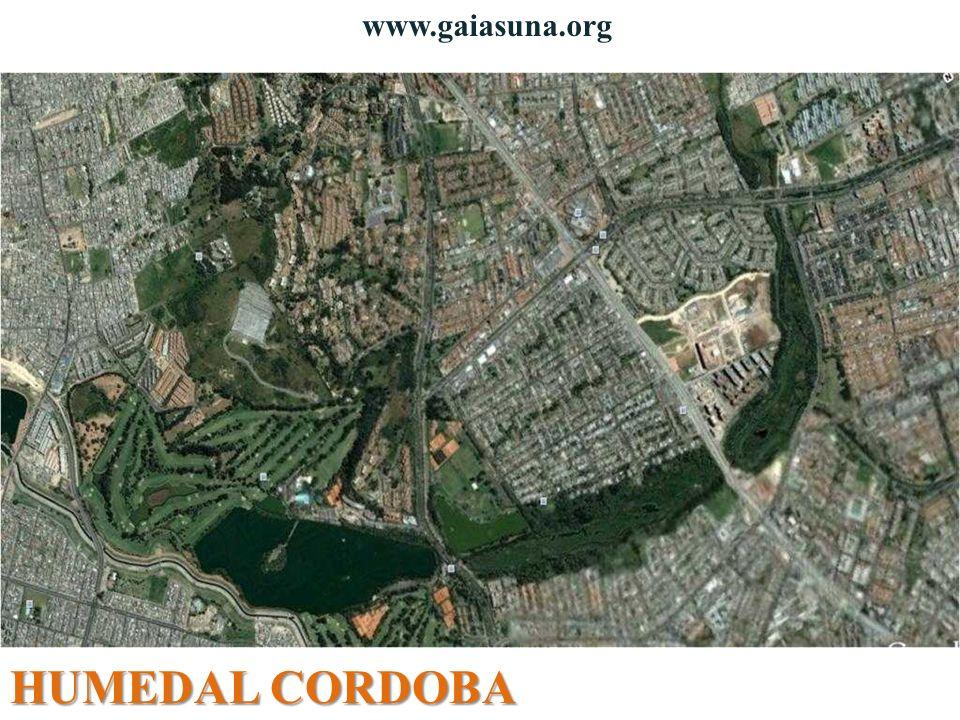 www.gaiasuna.org HUMEDAL CORDOBA