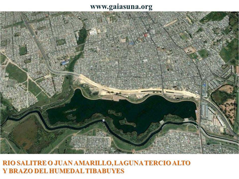 www.gaiasuna.org RIO SALITRE O JUAN AMARILLO, LAGUNA TERCIO ALTO