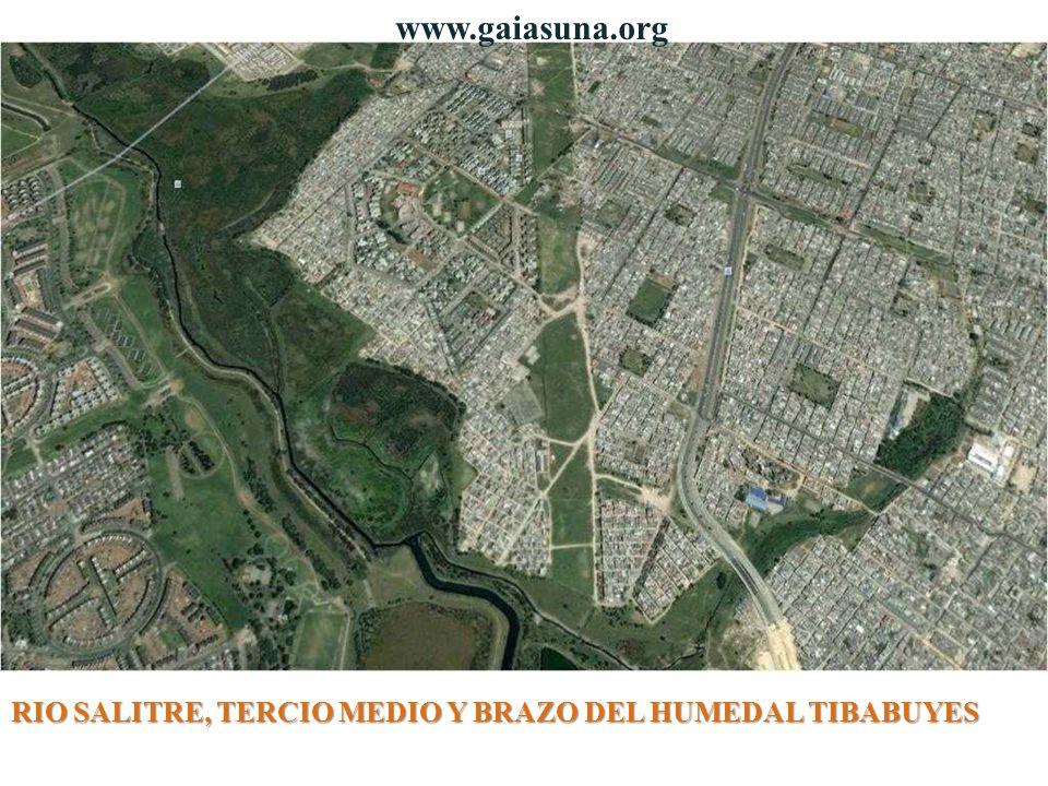 www.gaiasuna.org RIO SALITRE, TERCIO MEDIO Y BRAZO DEL HUMEDAL TIBABUYES