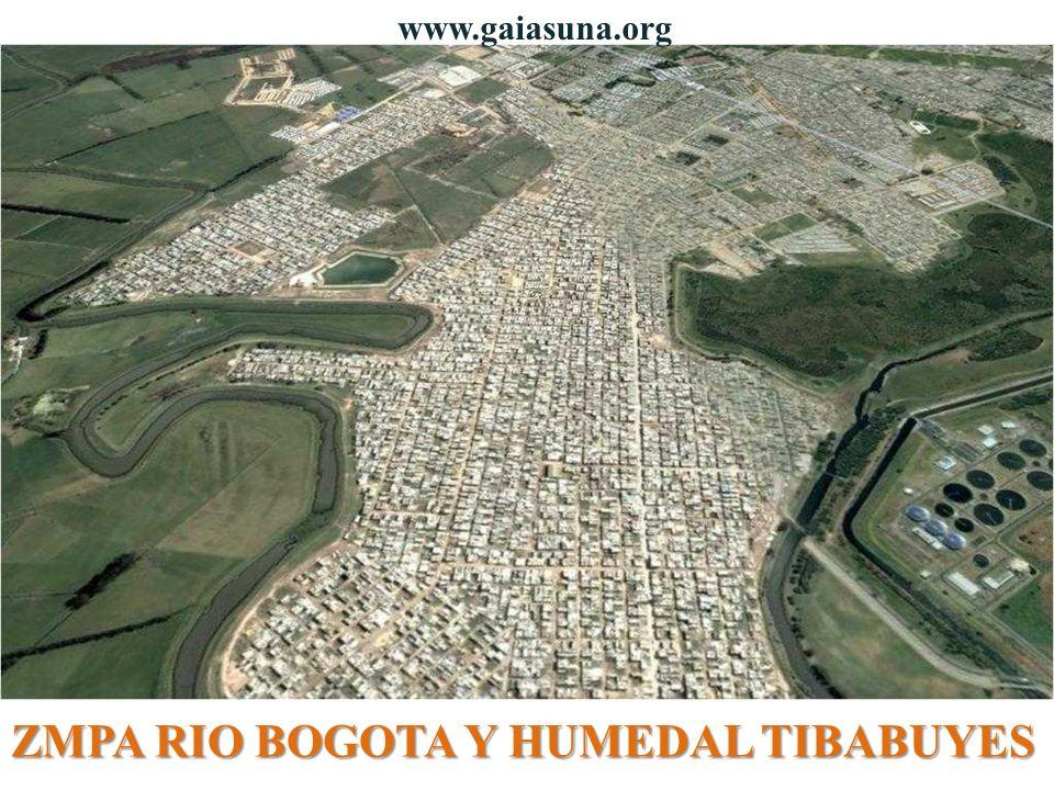 ZMPA RIO BOGOTA Y HUMEDAL TIBABUYES