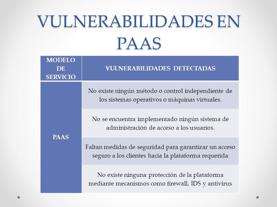 VULNERABILIDADES EN PAAS