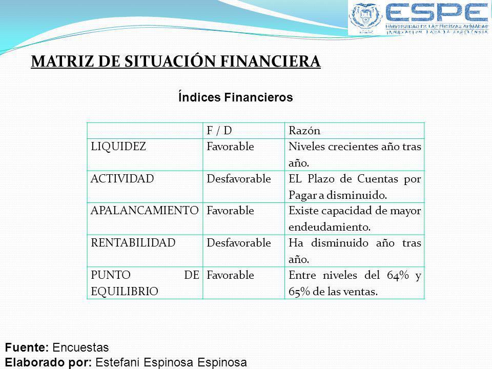 MATRIZ DE SITUACIÓN FINANCIERA