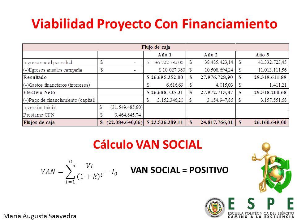 Viabilidad Proyecto Con Financiamiento