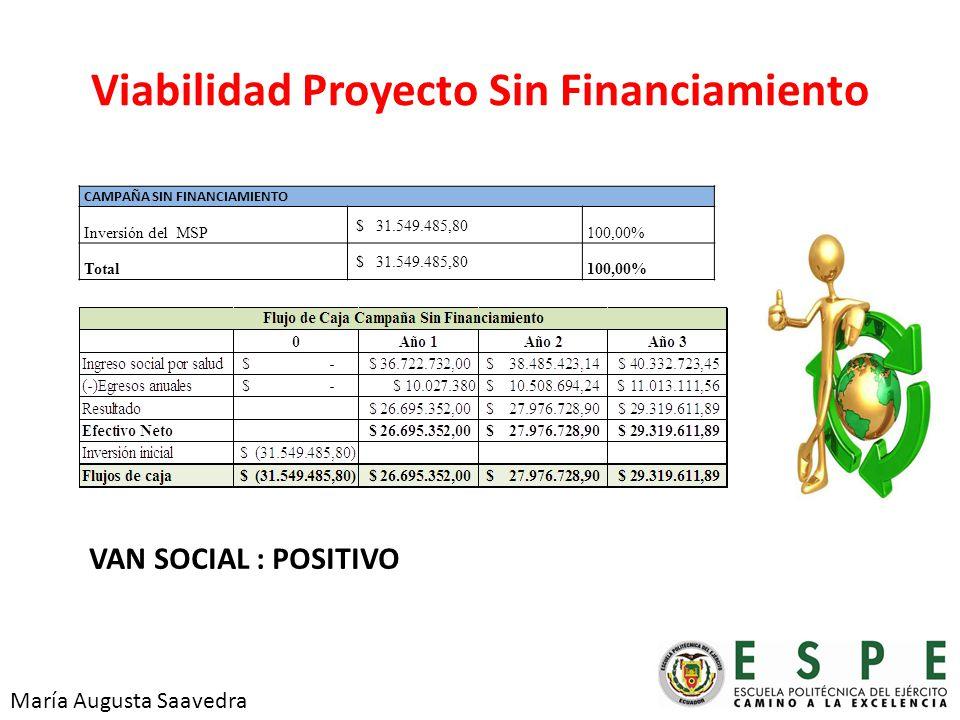 Viabilidad Proyecto Sin Financiamiento