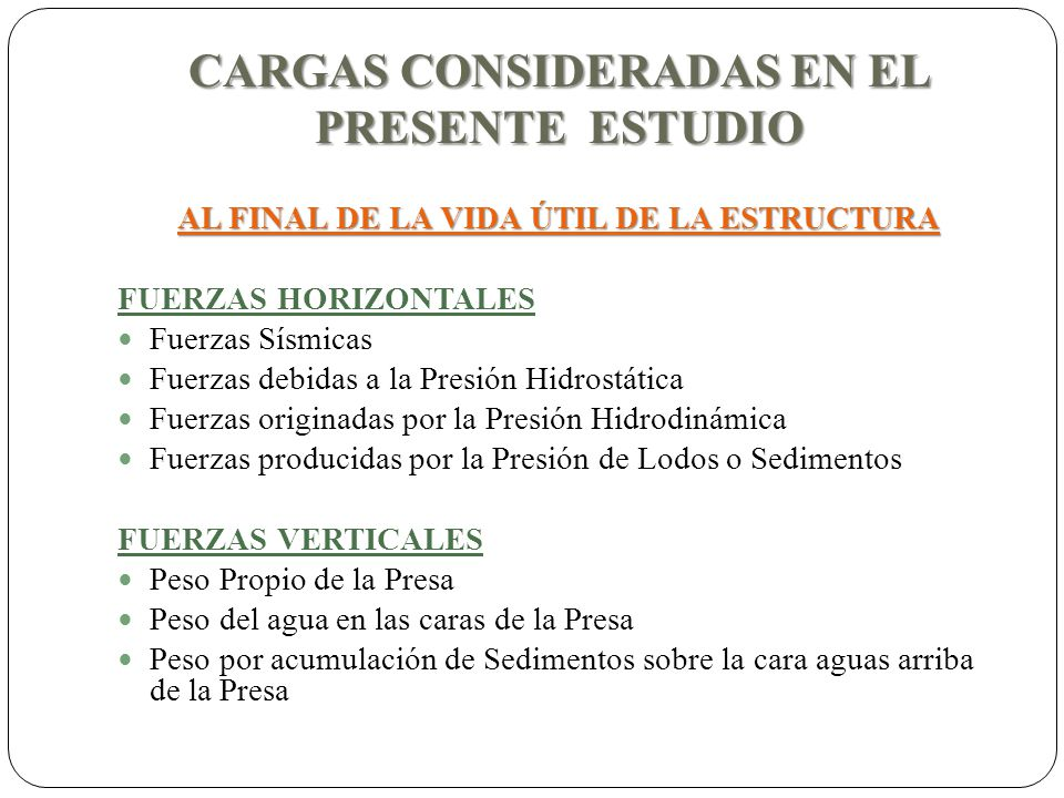 CARGAS CONSIDERADAS EN EL PRESENTE ESTUDIO