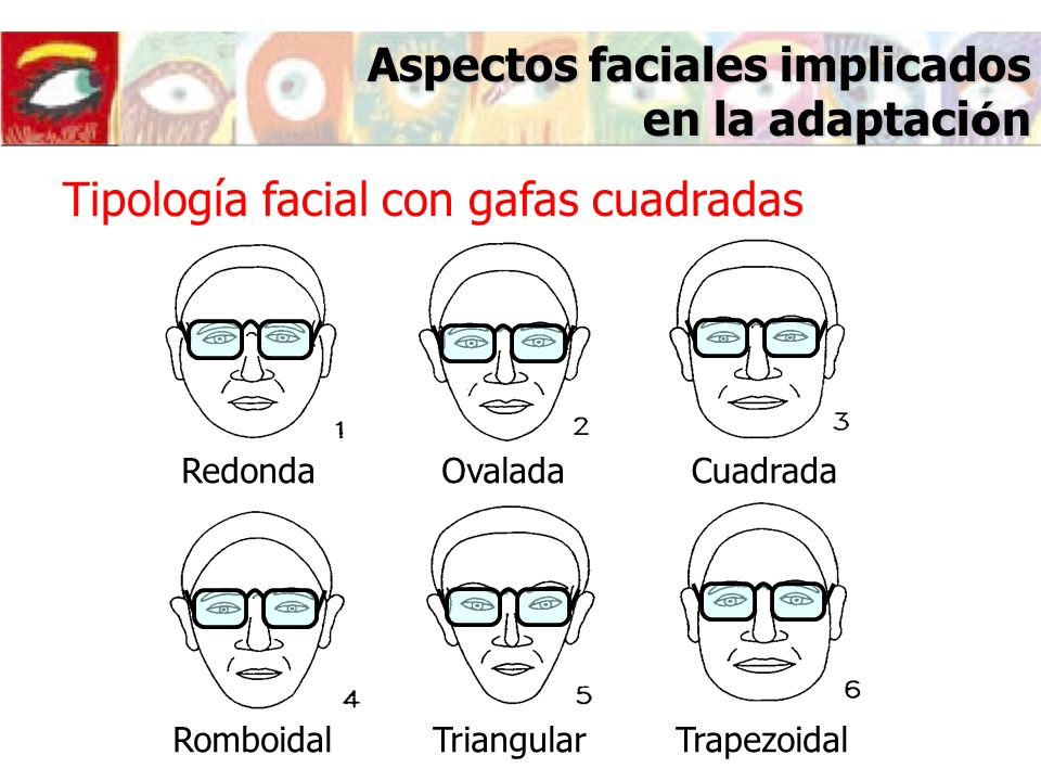 Aspectos faciales implicados en la adaptación