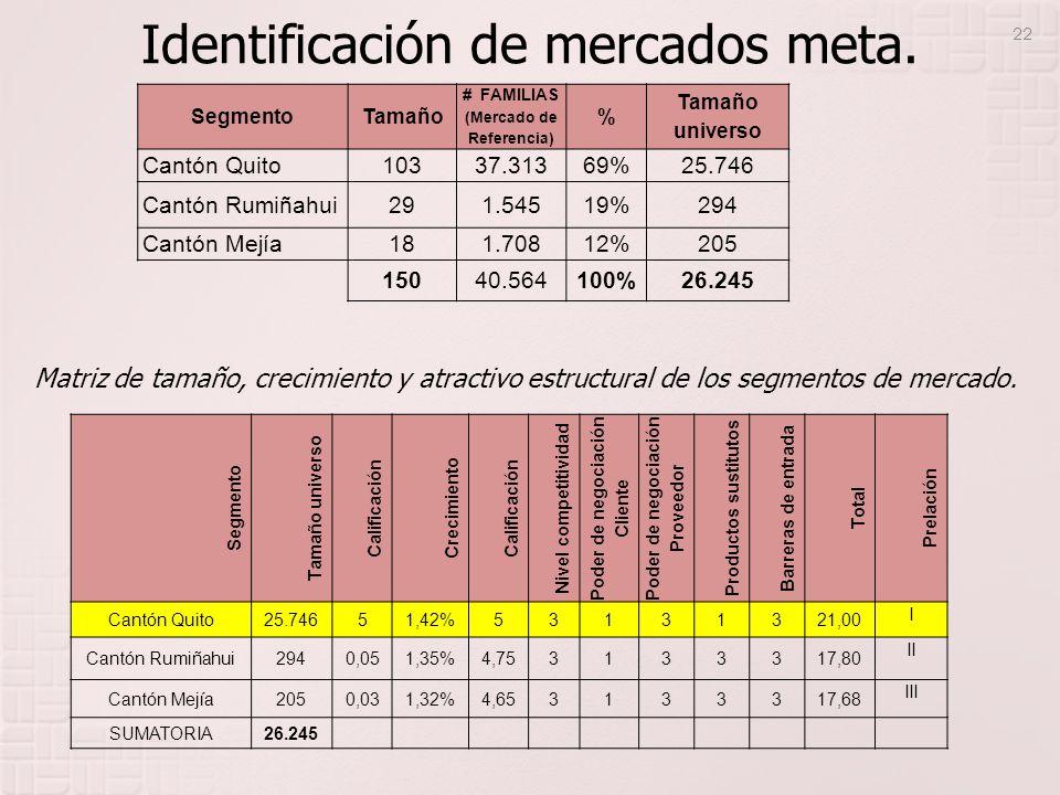 Identificación de mercados meta.