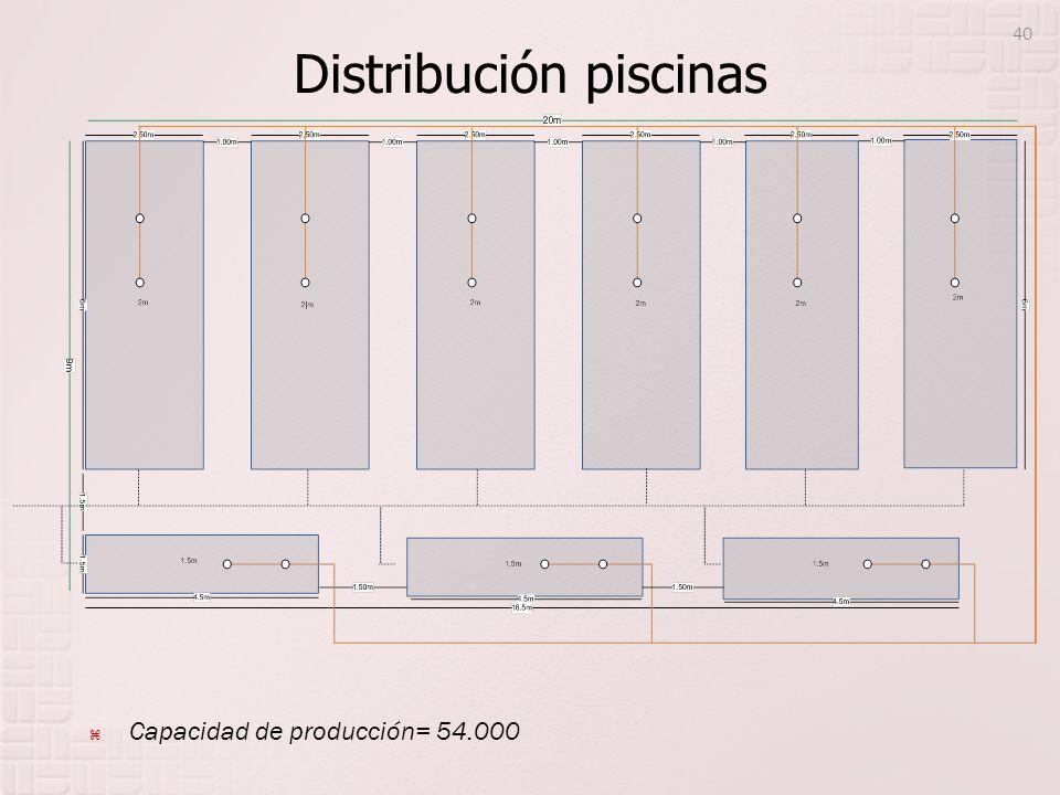 Distribución piscinas