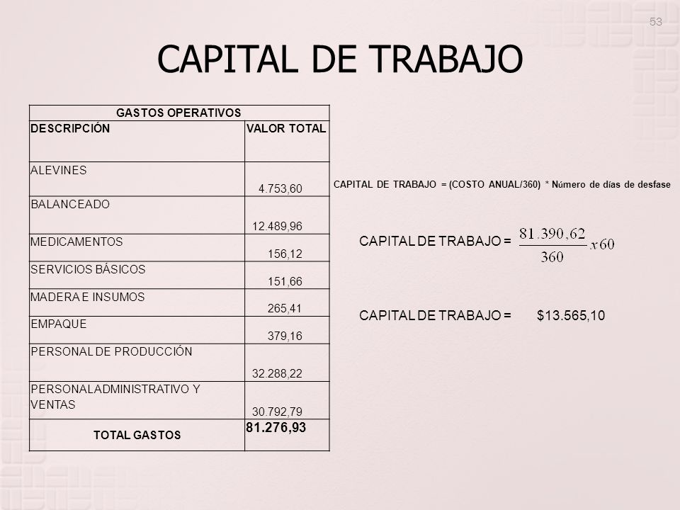 CAPITAL DE TRABAJO CAPITAL DE TRABAJO = $13.565,10 81.276,93